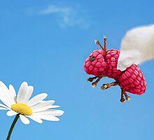 Waspberry by Vanessa Dualib
