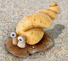 Cassavalus Shiitakilis - the Veggie Sea Snail by Vanessa Dualib