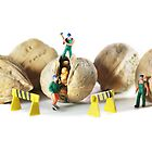 Direct from Lilliput, the 'Walnut Workers'! by Vanessa Dualib