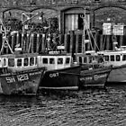 Crab Boats (B&W) by Colin Metcalf