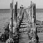 Old Pier in b&w by RebeccaBlackman