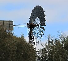 Windmill by Cheryl Parkes