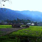 Nestled among the hills by Umashanker T