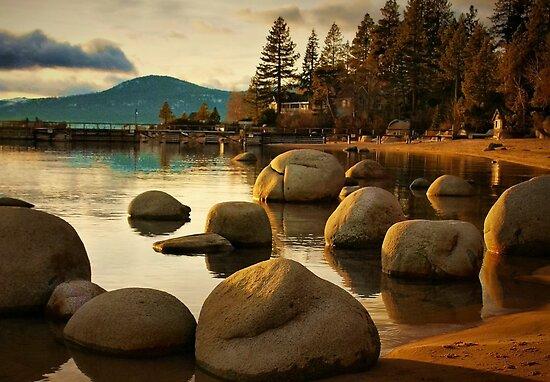Tahoe Shore by Barbara  Brown
