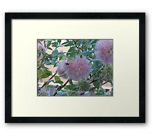 Pale Pink Pleasure Framed Print