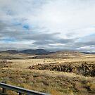 Arizona Highway Landscape by Ashlee Betteridge