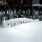 White bench by Bluesrose