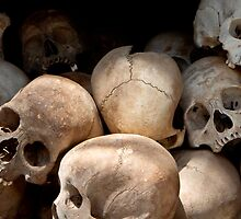 Skulls from the Pol Pott Regime  by GarethWilton