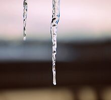 Cold Freeze by rachom