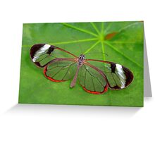 Wings of Glass - Glasswing - Greta oto Greeting Card
