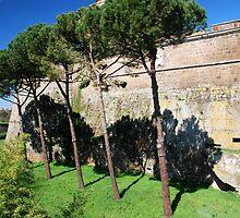 Against a Castle Wall-Civita Castellana, Italy by Deborah Downes