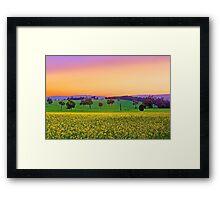 Canola Farm At Dawn Framed Print