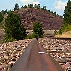 I'm Trackin by Howard Lorenz