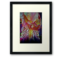 Light Iris Framed Print