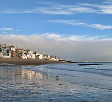 Very Cold Misty Day In Lyme by lynn carter