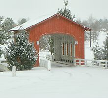 The Snow an Covered Bridge of Goshen, Arkansas by David  Hughes