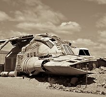 Outback Spaceship by Tim Luczak
