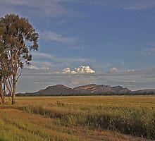 Northern Grampian Range by PABarrattArt