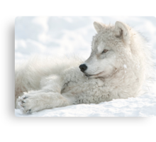 Chillin Out Metal Print