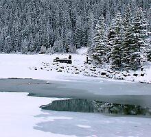 Frozen beauty, Lake Louise, Alberta Canada by Ali Brown
