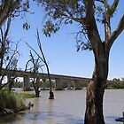 Blanchetown Bridge over the River Murray.S.A. by Rita Blom