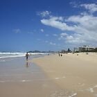 Summer in SE Queensland by aussiebushstick