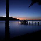 Purple night by simbachee