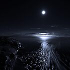 By the Light of the Silvery Moon by Richard  Leon