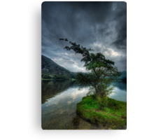 Ullswater Tree Canvas Print