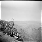 the grand canyon II - holga by iannarinoimages