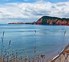 Sidmouth Overview by Susie Peek