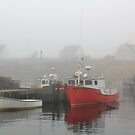 Harbour Mist by HALIFAXPHOTO