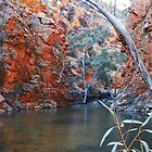Serpentine Gorge, Central Australia by DashTravels