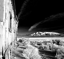 Old Ranchers Shack by Cat Connor