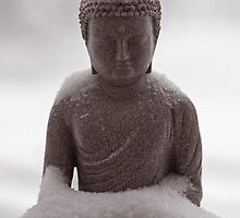 Buddha in the Snow by Edward Myers