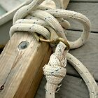 Rope Still Life by schugirl