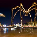 Maman the Giant Spider - Bilbao, Spain by Yen Baet