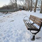 A winter bench by mltrue