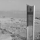 Lone Sign and the Dead Sea by Adam Isaacson