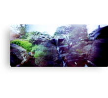 A blended view towards Gov't House Canvas Print