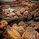 Shipwreck Coast, King Island by Karen Scrimes