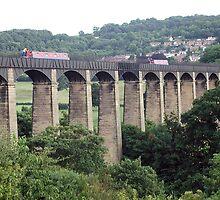The Pontcysyllte Aqueduct by Paul  Green