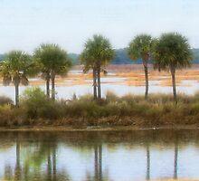7 Palm Trees in a Row by DeerPhotoArts