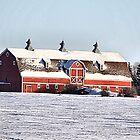 The Three Cupola Barn by Leslie van de Ligt