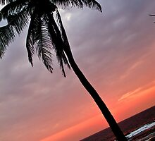 Beach Sunset by induruwana