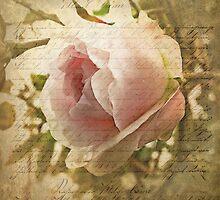 A Love Letter by Brenda Boisvert