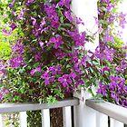 Purple Invasion by Carol E. Davis
