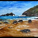 ROCKY BEACH by Wayne Dowsent