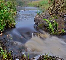 Apsley River.  24-1-11. by Warren  Patten