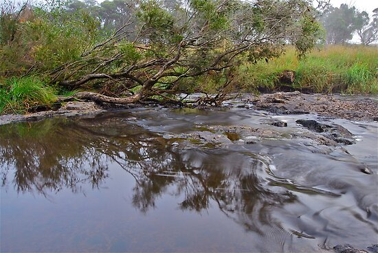 Apsley River.  24-1-11.    no2. by Warren  Patten
